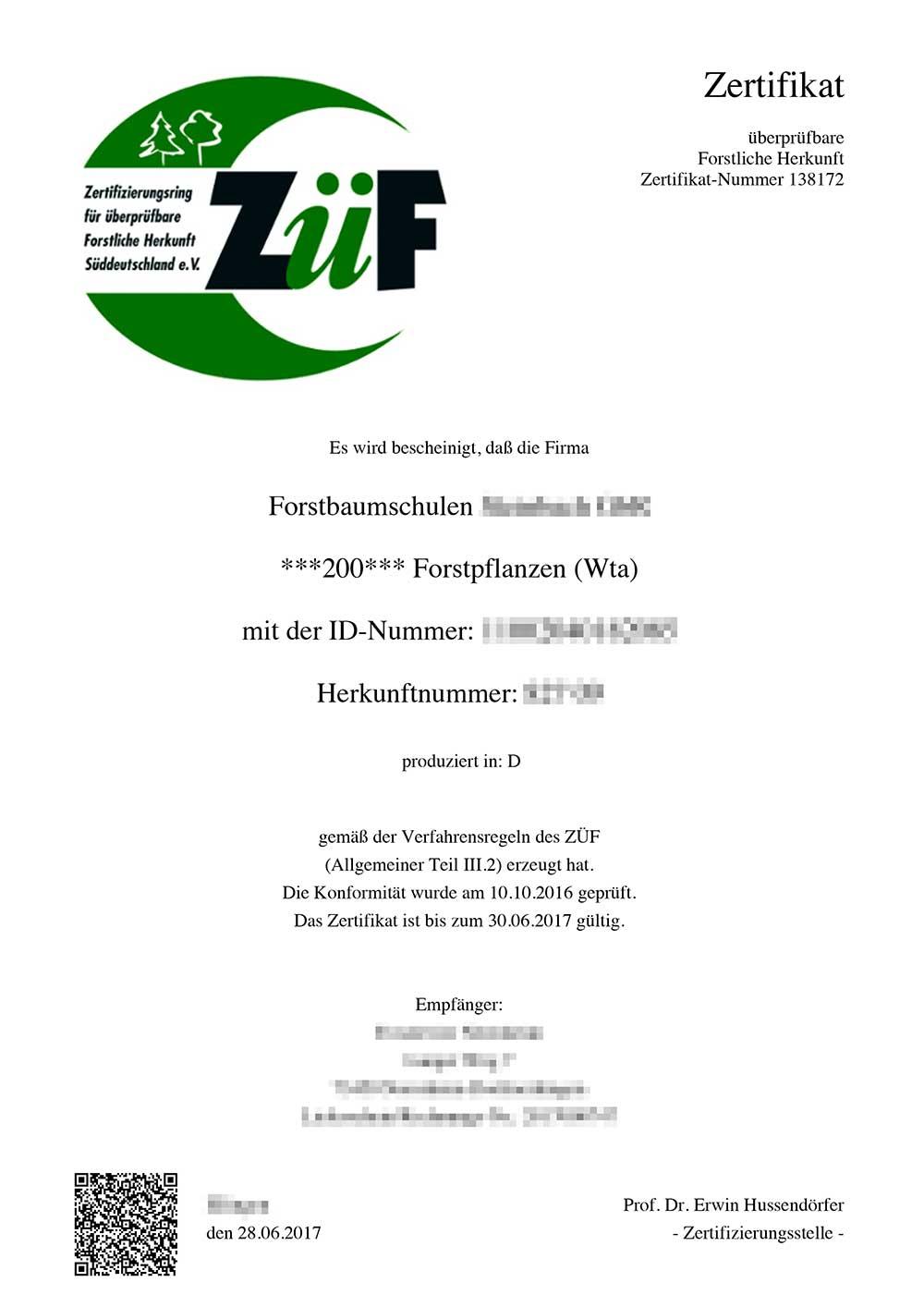 Erfreut Zertifikat Der Aktienvorlage Ideen - Entry Level Resume ...